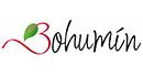 Město Bohumín