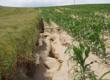 Navigační obrázek služeb v oblasti adaptace na klimatickou změnu